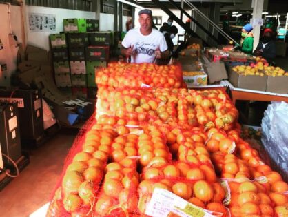 HN Pieterse Boerdery donates oranges for Special Olympics Food Parcel.